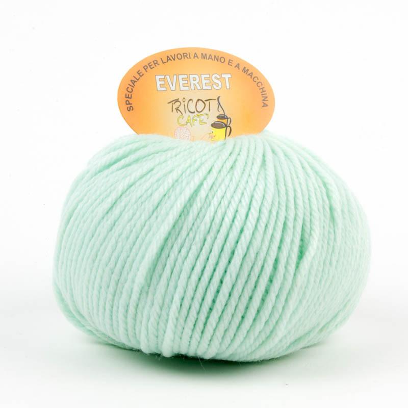 Everest - Filato misto lana ideale per progetti che durano tempo - Verde Acqua 489