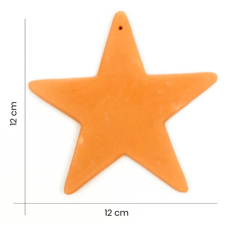 Coccio Stella Grande
